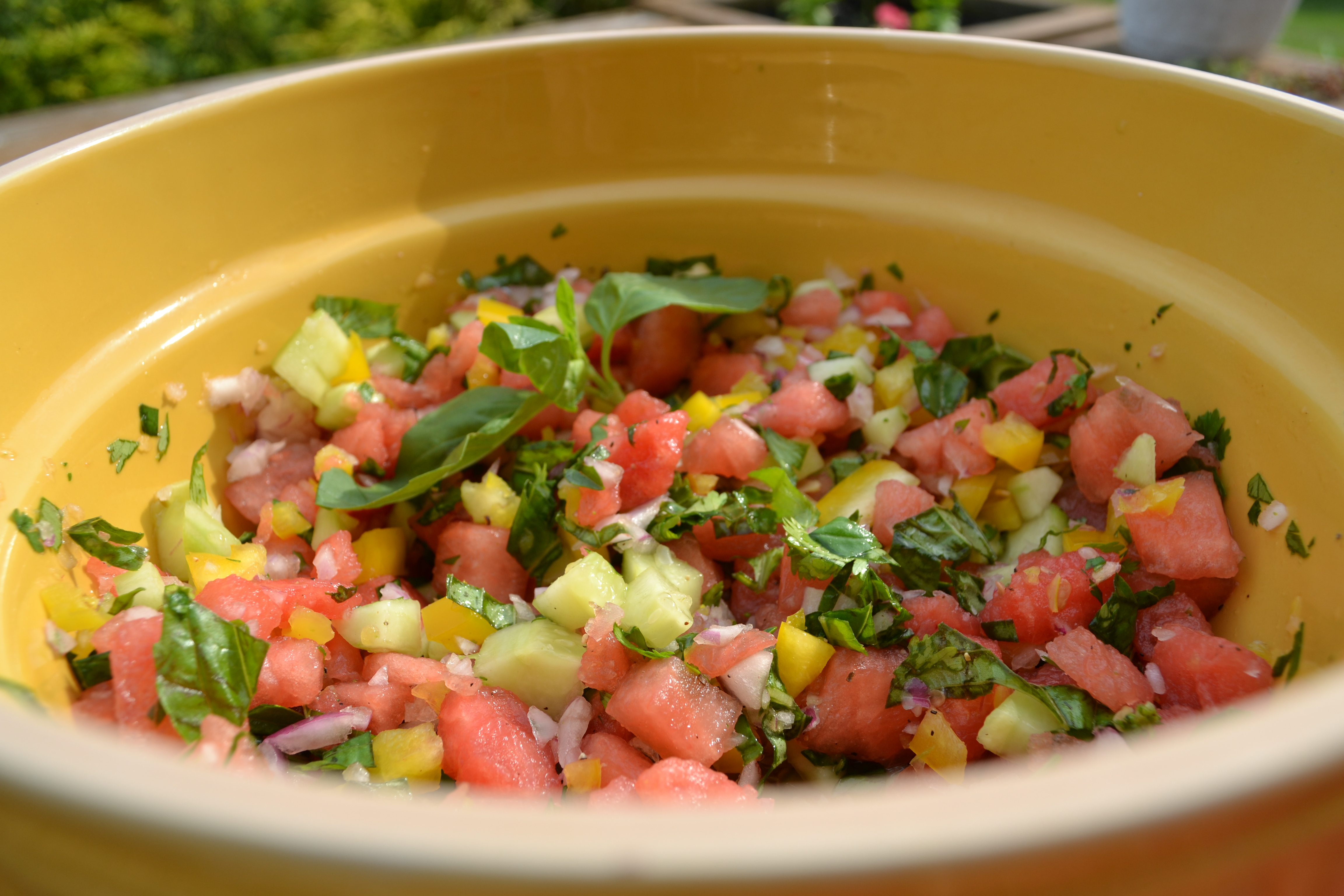 Watermelon Salsa - Sisterhood of the Sensible Moms | Sisterhood of the ...