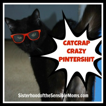 Catcrap Crazy Pintershit - Sisterhood of the Sensible Moms