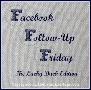 Facebook Followup Friday TemplateThe LuckyDuck