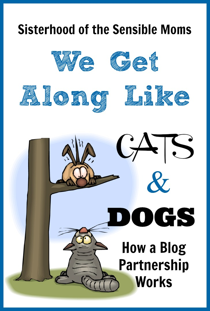 We Get Along Like Cats and Dogs How A Blog Partnership Works