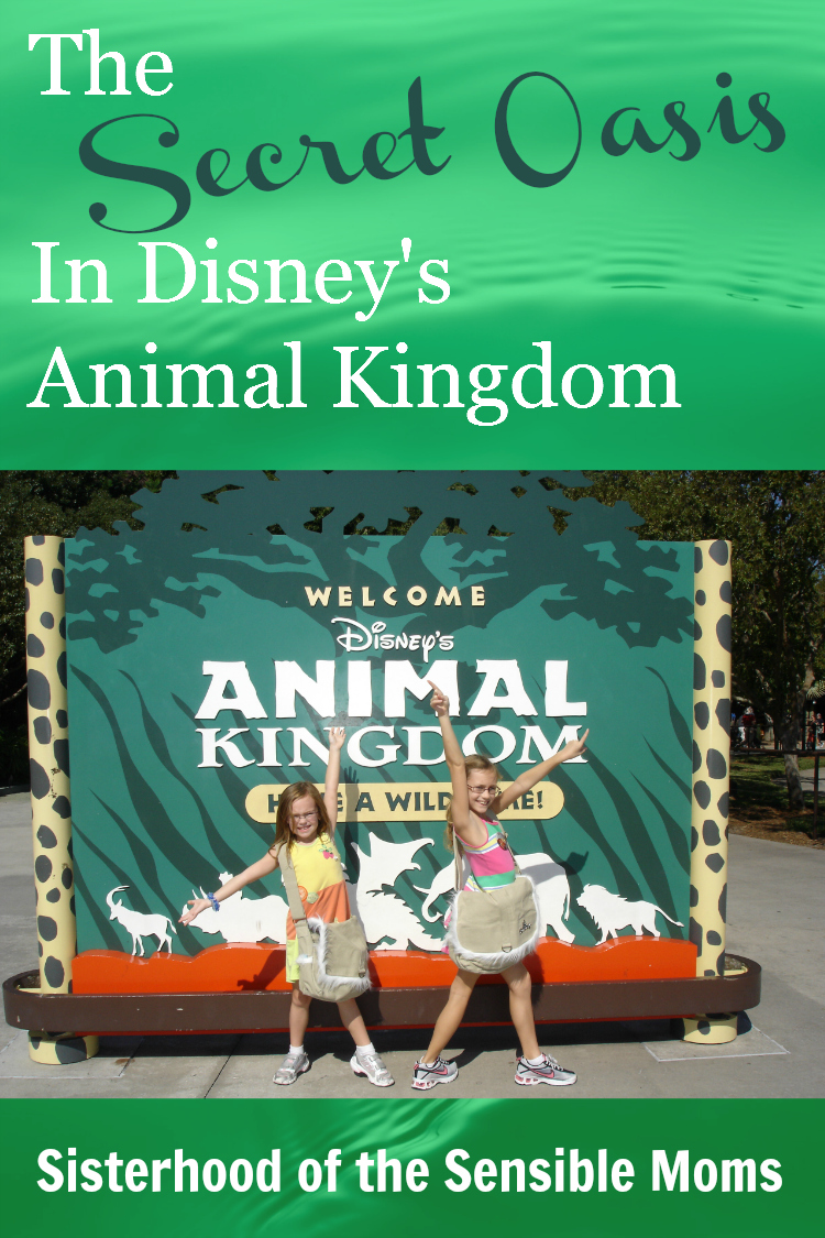 The Secret Oasis in Animal Kingdom | Travel and Disney World | Sisterhood of the Sensible Moms
