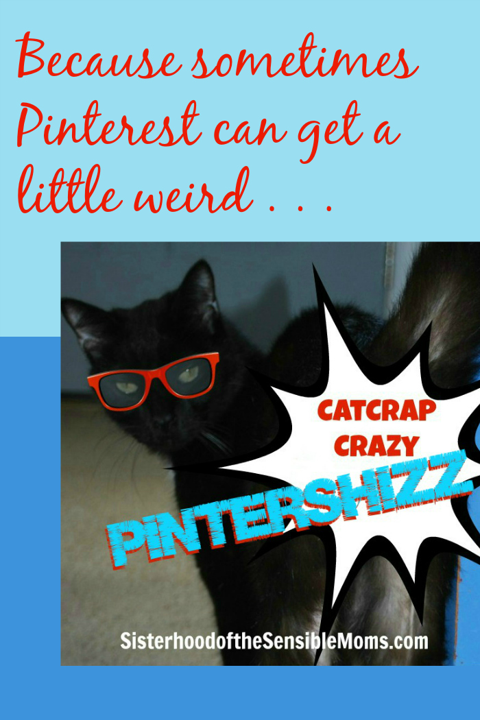 Catcrap Crazy Pintershizz on Pinterest