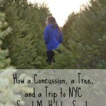 How A Concussion, A Tree, and A Trip to NYC Saved My Holiday Sanity