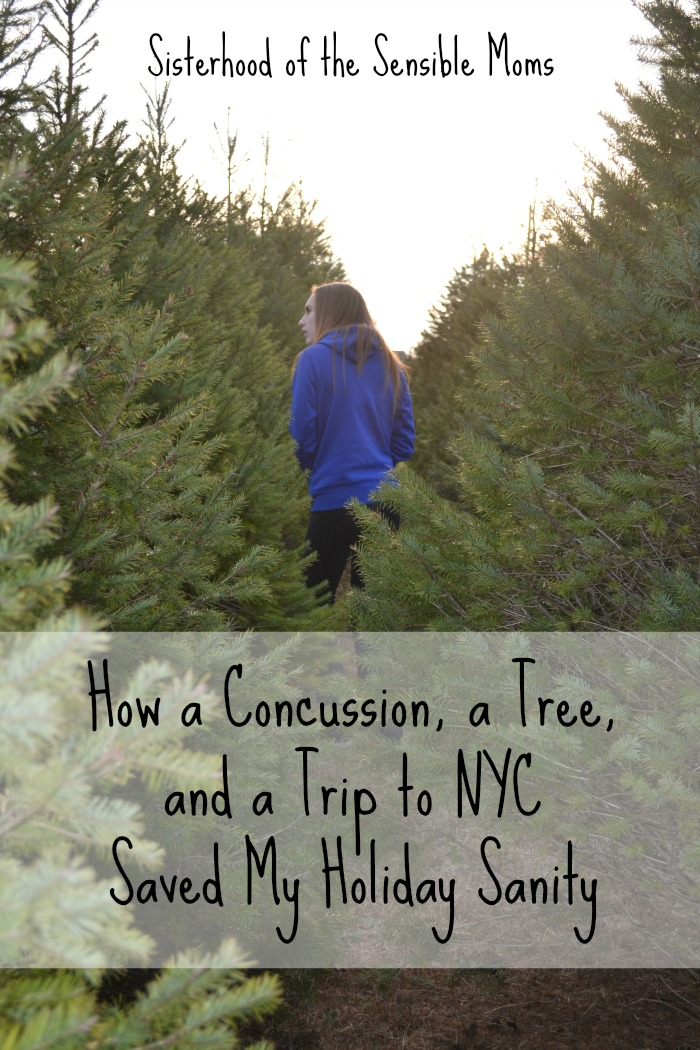 How A Concussion, A Tree, and A Trip to NYC Saved My Holiday Sanity -- A procrastinator is forced into reform! -- Sisterhood of the Sensible Moms
