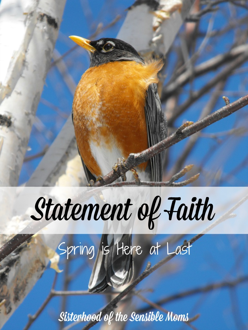 Statement of Faith--How a mother's faith can continue to guide even after she is gone. Spring is here at last with its bright skies and inspiration. |Grief and Healing| Sisterhood of the Sensible Moms