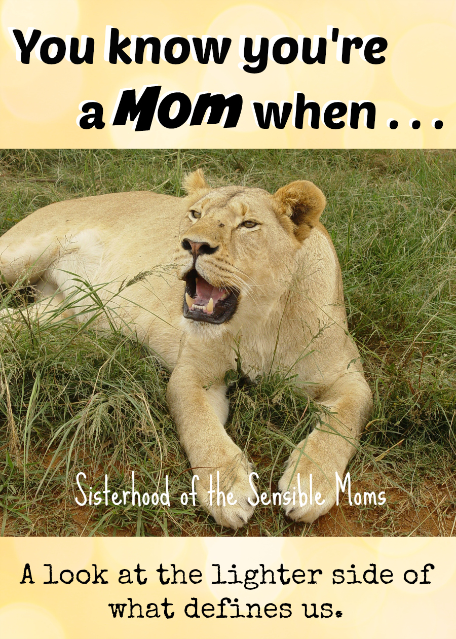 Motherhood is more than a job, it's a way of life. Looking at the lighter side of what defines us. You know you're a mom when . . . Like this? Click the post to see more! | Parenting humor |  Sisterhood of the Sensible Moms