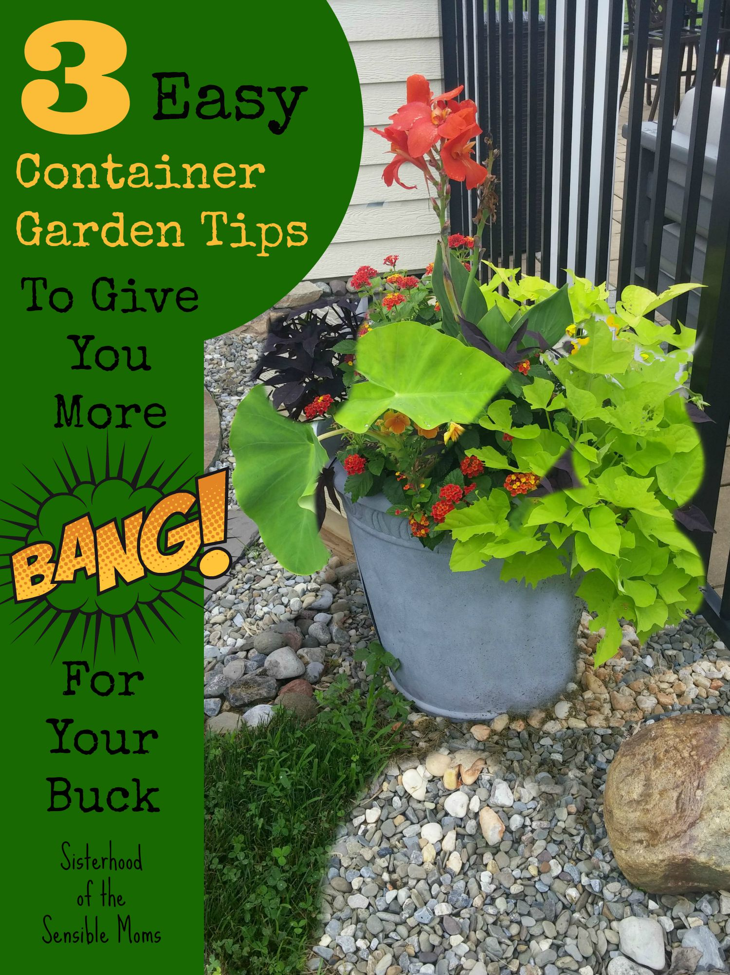 Three Easy Container Garden Tips to Give You More Bang for Your Buck | DIY Garden Design Principles | Sisterhood of the Sensible Moms