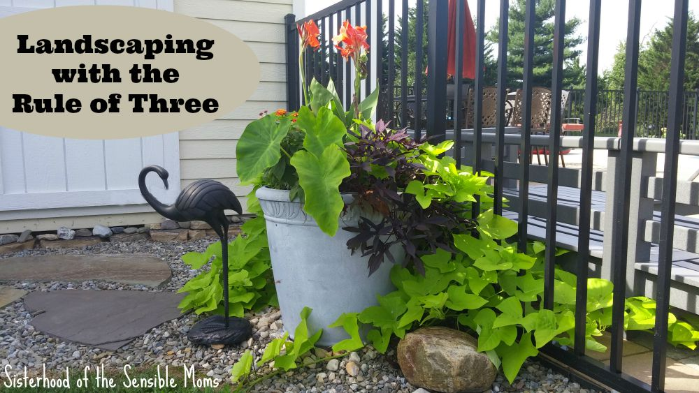 Fast and Easy! Lanscaping with the Rule of Three | DIY design principles for your garden. Sisterhood of the Sensible Moms