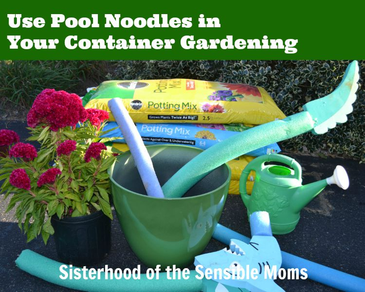 Use Pool Noodles in Your Container Gardening | Recycling is good! Plus other helpful tips! | Sisterhood of the Sensible Moms
