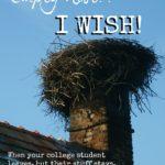 Empty Nest? I Wish!