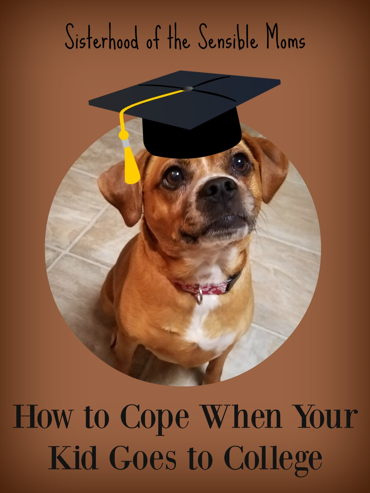 How to cope when your kid goes to college. It's more than a tale of two pound puppies; it's the lengths moms will go to deal with kids flying the coop. | Parenting | Sisterhood of the Sensible Moms