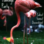 DIY Flamingo Party