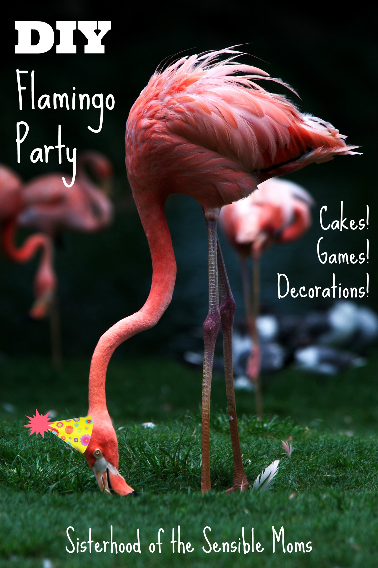 A flamingo party theme works for birthdays, showers, pool parties, and barbecues! Easy, DIY, and fun! Great cake decorating tips too! | Sisterhood of the Sensible Moms!